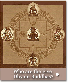 Who are the Five Dyhani Buddhas?